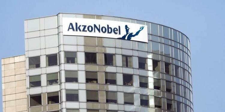 PPG et Elliott contestent le projet alternatif d'Akzo Nobel